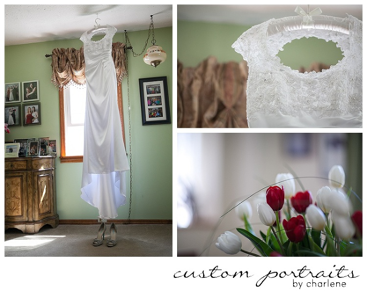 bridal prep photos dress hanging pittsburgh wedding photographer (1)