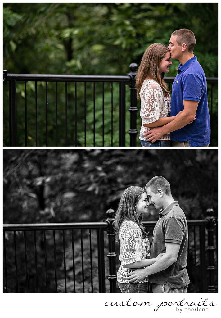 pittsburgh engagement session pittsburgh wedding photographer custom portraits by charlene schenley park engagement session mount washington engagement photos engagement pictures (1)